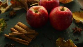 Röda äpplen och kryddor lager videofilmer