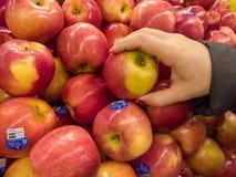 Röda äpplen på speceriaffären med kvinnahanden royaltyfri bild