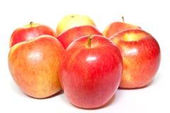 Röda äpplen på vit bakgrund Royaltyfri Fotografi