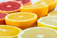 Röda apelsiner, apelsiner och grapefruktcitrusfrukter Royaltyfria Bilder