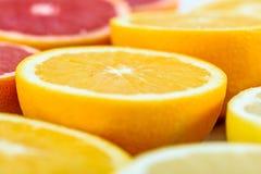 Röda apelsiner, apelsiner och grapefruktcitrusfrukter Royaltyfri Fotografi