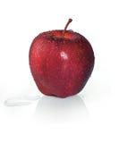 Röda Apple royaltyfria foton