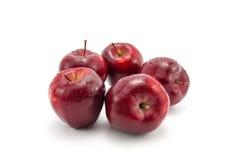 Röda Apple Royaltyfria Bilder