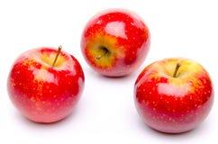 Röda ariane äpplen Royaltyfri Fotografi