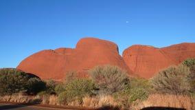 röda Australien mittolgas Arkivfoto