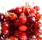 röda bär Royaltyfria Bilder