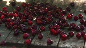 Röda bär av mogna körsbär faller på en trätabell i ultrarapid lager videofilmer