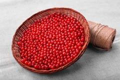 Röda bär för närbild i en brun korg på en grå bakgrund Mogen rå röd vinbär Artistisk vinbär mycket av vitaminer Royaltyfri Fotografi