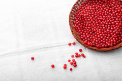 Röda bär på en silvrig tygbakgrund Mogen röd vinbär i en träkorgnärbild Foods för healthful bantar Fotografering för Bildbyråer