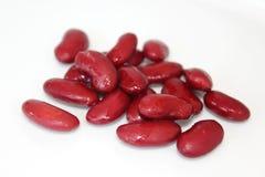 Röda bönor Arkivbilder