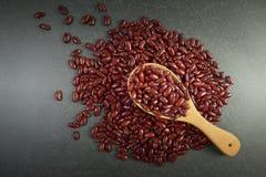 Röda bönor för frö som är användbara för hälsa i wood skedar på grå bakgrund Arkivfoton