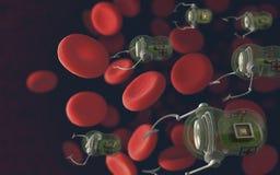 röda blodceller Royaltyfri Fotografi