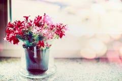 Röda blommor i blommakruka på fönsterfönsterbräda med kvistbelysning Royaltyfria Bilder