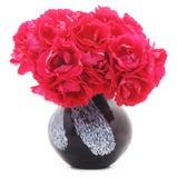 Röda blommor i en vase Arkivfoto