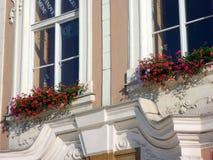 Röda blommor i fönsteraskar, storslaget Prague radhus, Tjeckien Royaltyfri Bild