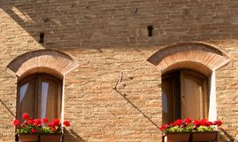 Röda blommor i fönstren Arkivfoto
