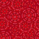 Röda blommor med remsor Arkivbilder