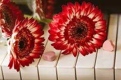 Röda blommor och godis på ett pianotangentbord arkivbild