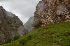 Röda blommor på en forntida Inca fördärvar väggen fotografering för bildbyråer