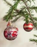 Röda bollar på julgranfilial Arkivbilder