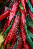 röda bukettpaprikor Fotografering för Bildbyråer