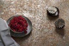 röda bunkevinbär Arkivfoto