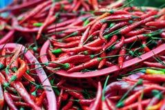 röda chilies Fotografering för Bildbyråer
