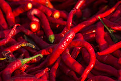 röda chilies Arkivbilder