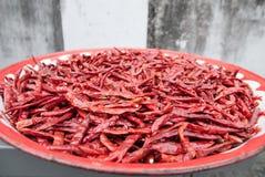 Röda chilies, Bangkok Arkivbild