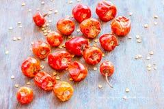 Röda Chilies för knapp Arkivfoto