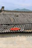 Röda chilies på tak Royaltyfri Fotografi