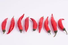 Röda chilies på vit bakgrund Arkivfoto