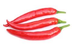 Röda chilipeppar på vitbakgrund Royaltyfria Foton
