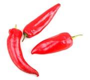 Röda chilipeppar Arkivbilder