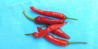 röda chilir Royaltyfri Fotografi