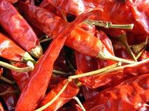 röda chilir Fotografering för Bildbyråer