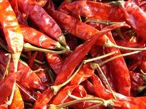 röda chilir Arkivfoto