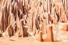 Röda Cingia, Madagascar Royaltyfria Bilder