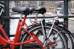 Röda cyklar i Amsterdam royaltyfri foto
