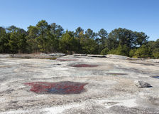 Röda Diamorphia på stenberget Arkivfoton