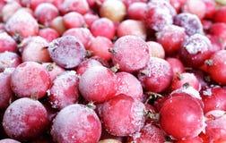 Röda djupfrysta bär som täckas med is och is, röda vinbär, lingon, tranbär, vitaminer i vinter ovanför sikt Makro royaltyfri fotografi