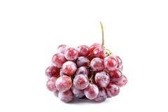 Röda druvor är en grupp Arkivfoto