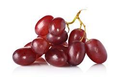 röda druvor arkivbild