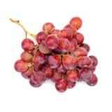 Röda druvor royaltyfri fotografi