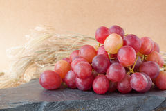 röda druvor med naturbakgrunder, fruktbakgrunder Arkivfoto