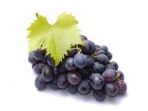 Röda druvor med sidor arkivfoton