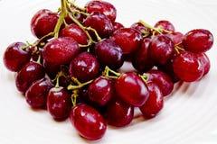 Röda druvor med vattendroppar Arkivfoton