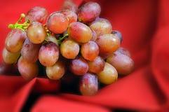 Röda druvor på rött Royaltyfri Bild
