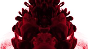 Röda färgpulverdroppar i vatten - spegelbild vektor illustrationer