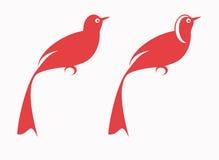 röda fåglar Arkivbild